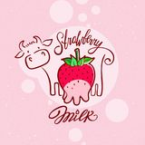 Red sweet berry with a cow drawing Strawberry Milk Stock Photography