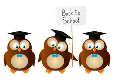 Funny student owls Royalty Free Stock Photo