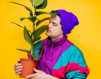 Funny style white man in 90s jacket and hat with ficus plant. On yellow background royalty free stock image