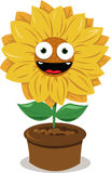 Funny Sunflower Royalty Free Stock Photo