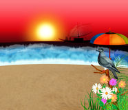Funny Sunset. A dove relax at beach on sunset Stock Photos