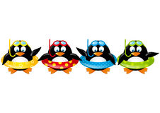 Funny swimming penguins Royalty Free Stock Photo