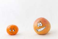 Funny tangerine and grapefruit Royalty Free Stock Images