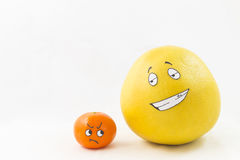 Funny tangerine and pomelo Stock Image