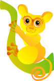 Funny tarsier. Vector illustration  Stock Image