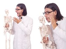 The funny teacher with skeleton isolated on white Stock Images