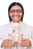 Funny teacher with skeleton isolated Royalty Free Stock Photography