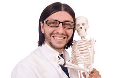 Funny teacher with skeleton isolated Royalty Free Stock Image