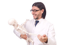Funny teacher with skeleton isolated Stock Photo
