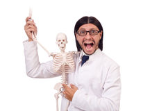 Funny teacher with skeleton isolated Stock Photography