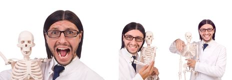 The funny teacher with skeleton isolated on white Royalty Free Stock Photography
