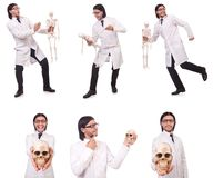 The funny teacher with skeleton isolated on white Stock Photography