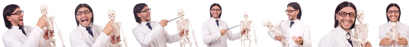 The funny teacher with skeleton isolated on white Royalty Free Stock Images