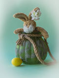 Funny teddy Easter rabbit look out from flower pot. Royalty Free Stock Image