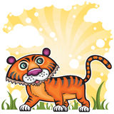 Funny Tiger. On green hill. 2010 is the Year of the tiger according to the Chinese Zodiac Royalty Free Stock Images