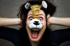 Funny tiger Stock Photos