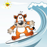 Funny Tiger animal playing surf. Action illustration Stock Images