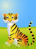 Funny Tiger cartoon Royalty Free Stock Photo