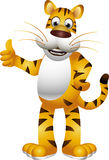 Funny tiger and cartoon. Vector illustration of tiger cartoon isolated on white background Stock Images