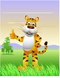 Funny tiger cartoon Stock Photography