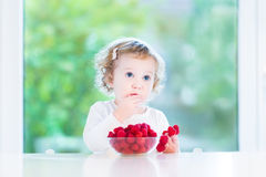 Funny toddler girl eating raspberries at white table. Funny toddler girl eating raspberries at a white table next to a big window Stock Photography