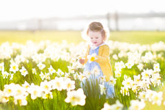 Funny toddler girl field of white daffodil flowers Royalty Free Stock Photography