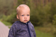 Funny toddler in a hoody staing in the autumn park and looking away Stock Images