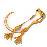 Funny toon gecko. 3D render with clipping path and shadow over white Royalty Free Stock Photo
