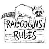 Funny and touching raccoon lies on a plate raccoons rules hand drawn engrave sketch vector illustration. Keep calm and love a raccoon Stock Photo