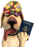 Funny Tourist Travel Passport Dog Royalty Free Stock Images
