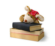 Funny Toy - Mouse tired of reading books. Student Mouse tired of reading - Good bye, childhood, welcome school royalty free stock images