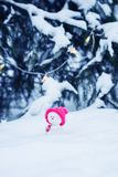 Snowman in a bright pink hat sitting in a white snowdrift with a gift in the winter new year`s Park under the elegant. Funny toy snowman in a bright pink hat stock images