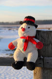Funny toy snowman Stock Photography