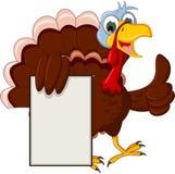 Funny turkey cartoon posing with blank sign Stock Photography