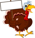 Funny turkey cartoon posing with blank sign Royalty Free Stock Photo