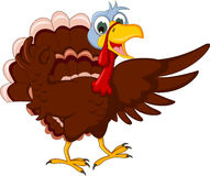 Funny turkey cartoon posing Stock Image