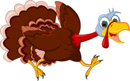 Funny turkey cartoon running Royalty Free Stock Photos