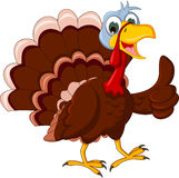 Funny turkey cartoon thumb up Stock Image
