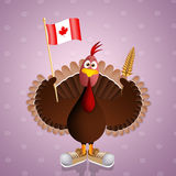 Funny turkey with flag of Canada Royalty Free Stock Image