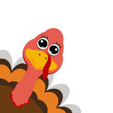 Funny turkey peeking sideways on Thanksgiving Day Stock Photo