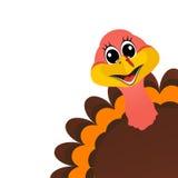 Funny turkey Peligrin peeking sideways on Thanksgiving Day vector Stock Image