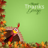 Funny turkey for Thanksgiving Stock Image