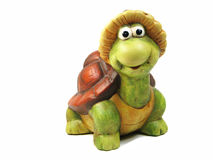 Funny turtle Royalty Free Stock Photography