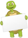 Funny Turtle Royalty Free Stock Images