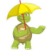 Funny Turtle. Stock Images