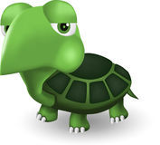 Funny turtle Royalty Free Stock Image
