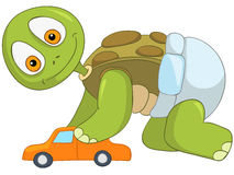 Funny Turtle. Baby Boy. Royalty Free Stock Photography
