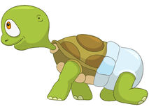 Funny Turtle. Baby First Step Stock Photo