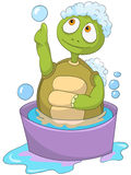 Funny Turtle. Baby Washing Royalty Free Stock Images