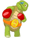 Funny Turtle. Boxer. Stock Photography